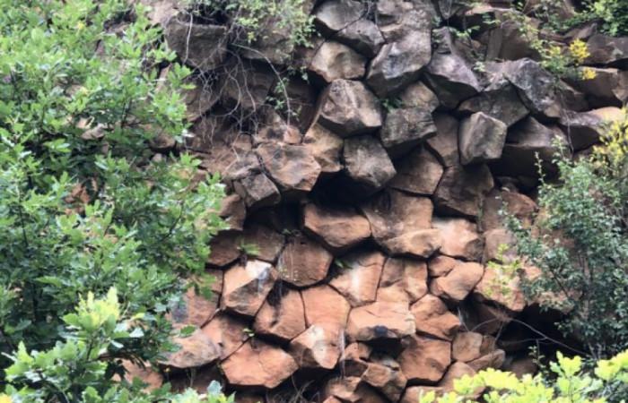 базальтові стовпи неподалік Мукачева, які утворилися внаслідок виверження вулкану