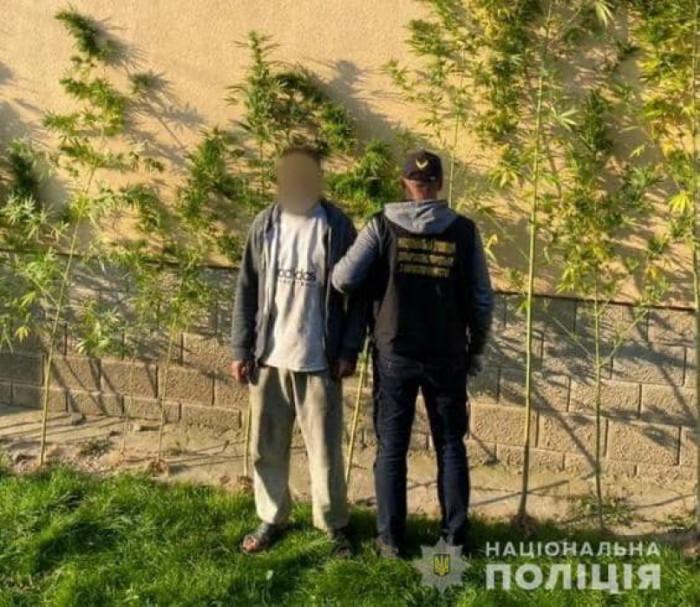 Мукачівські поліцейські вилучили у зловмисника понад 1 кілограм наркотиків рослинного походження