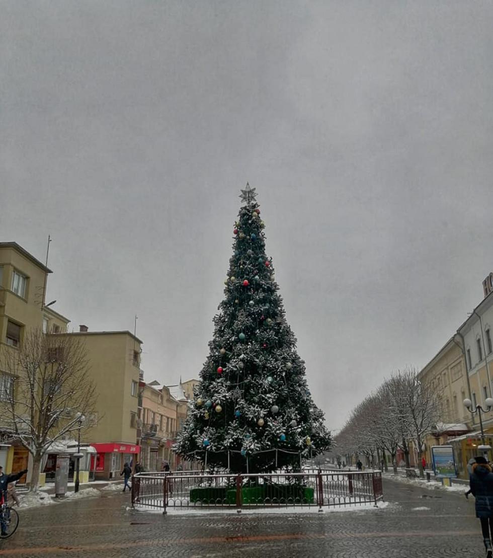 новорічна ялинка Мукачево